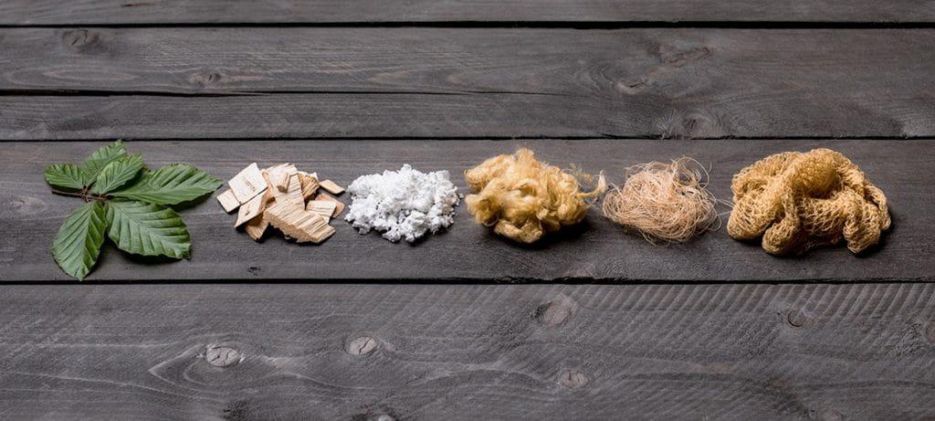 Buchenholz, Cellulose Faser, Cellulose Netz